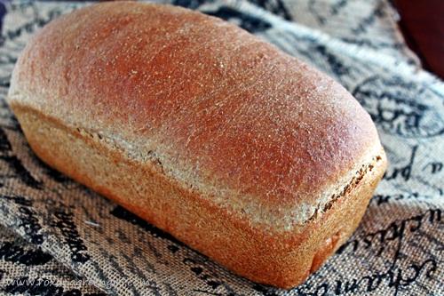 Ricotta and Olive Oil Bread | roxanashomebaking.com