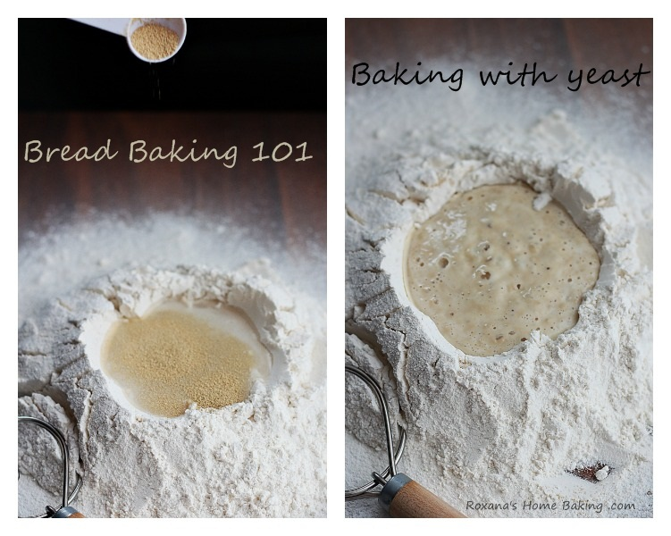 Bread Baking 101 - Baking with Yeast (types of yeast, proofing and a few tips) from Roxanashomebaking.com