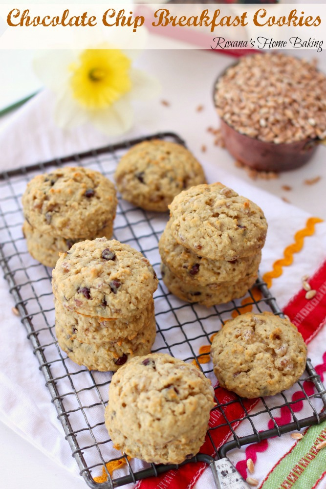 chocolate chip breakfast cookies recipe 2